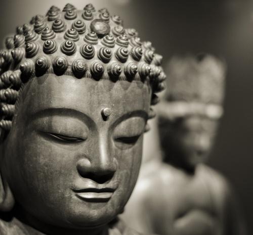 Hoofd van een stenen Buddha